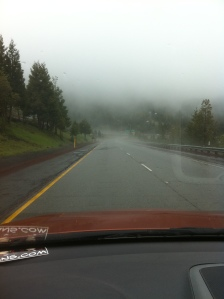 fog and rain on the way to Portland