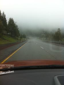 fog and rain on the way to Portland
